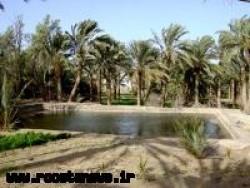 روستاي محمدآباد کوره گز/نائين/اصفهان