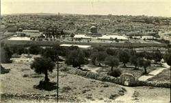 نوش آباد