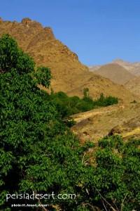 حاشیه کویری(4)-روستای استرک