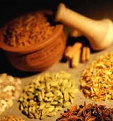 سهم ایران در تجارت گیاهان دارویی کمتر از 2 درصد است